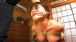 bdsm beauty hd japanese small-tits little slave