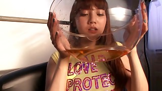 blowjob car hairy hot japanese kinky licking small-tits little