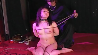 slave shaved pussy panties japanese domination bdsm