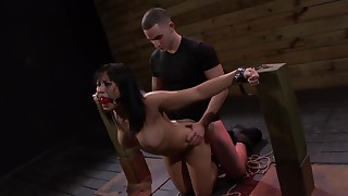 babe bdsm blowjob brunette couple doggy-style fuck japanese natural